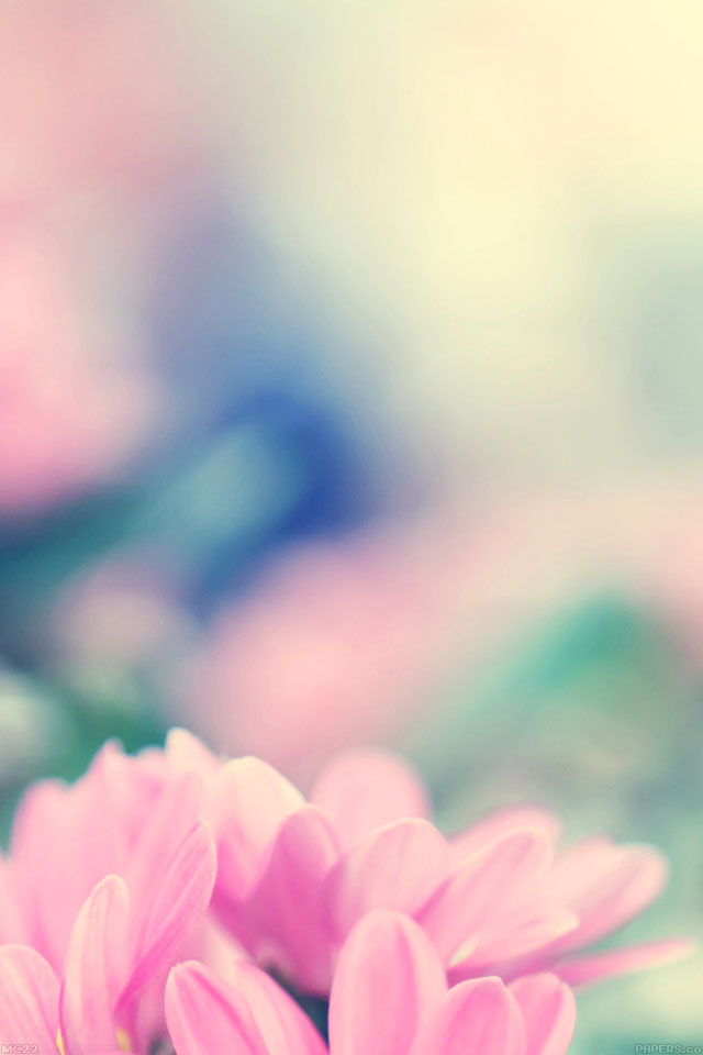 Mc22 Wallpaper Boo 184 Flower Pink Blurred Papers Co
