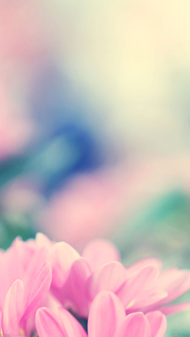 freeios8.com-iphone-4-5-6-ipad-ios8-mc22-wallpaper-boo-184-flower-pink-blurred