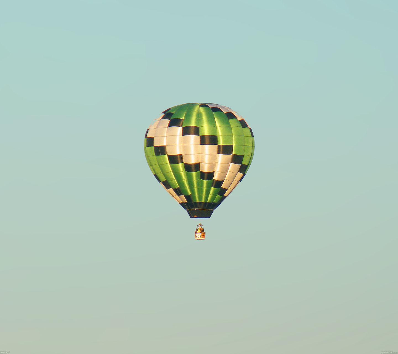 Mc47 wallpaper fly green home balloon for Wallpaper home green
