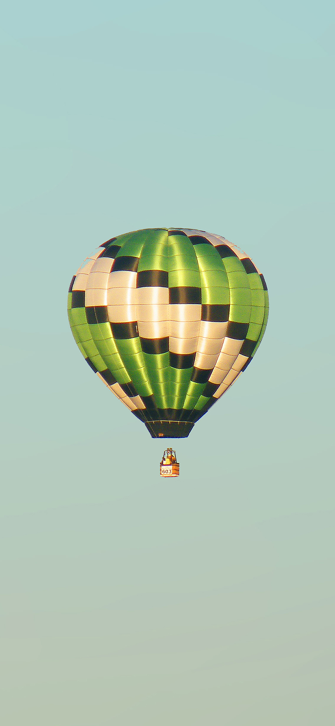 iPhoneXpapers.com-Apple-iPhone-wallpaper-mc47-wallpaper-fly-green-home-balloon