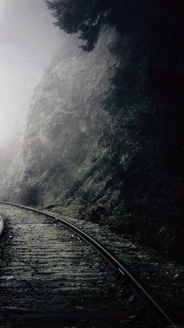 freeios8.com-iphone-4-5-6-ipad-ios8-mc49-wallpaper-mountain-foggy-road