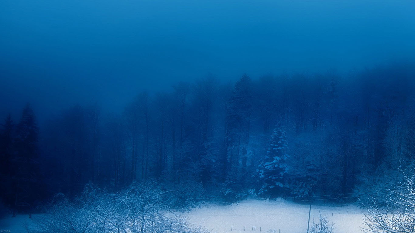 iPapers.co-Apple-iPhone-iPad-Macbook-iMac-wallpaper-mc84-wallpaper-blue-christmas-snow-mountain