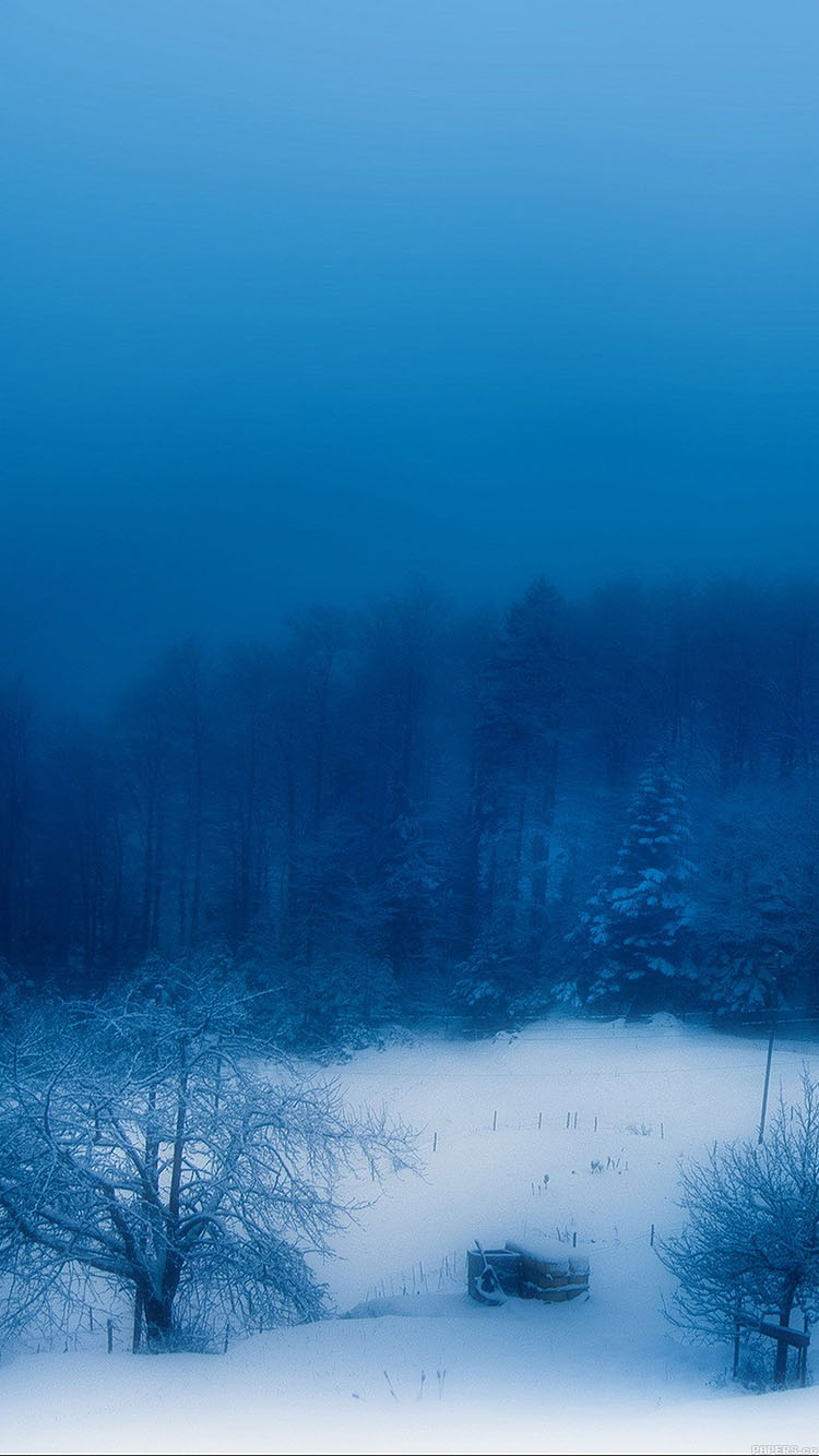 iPhone6papers.co-Apple-iPhone-6-iphone6-plus-wallpaper-mc84-wallpaper-blue-christmas-snow-mountain