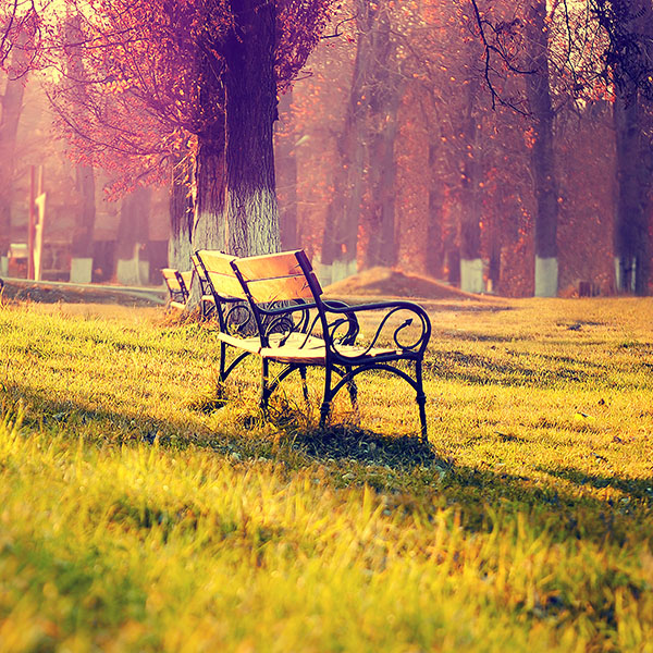 iPapers.co-Apple-iPhone-iPad-Macbook-iMac-wallpaper-md15-wallpaper-fall-park-chair-lonely-nature
