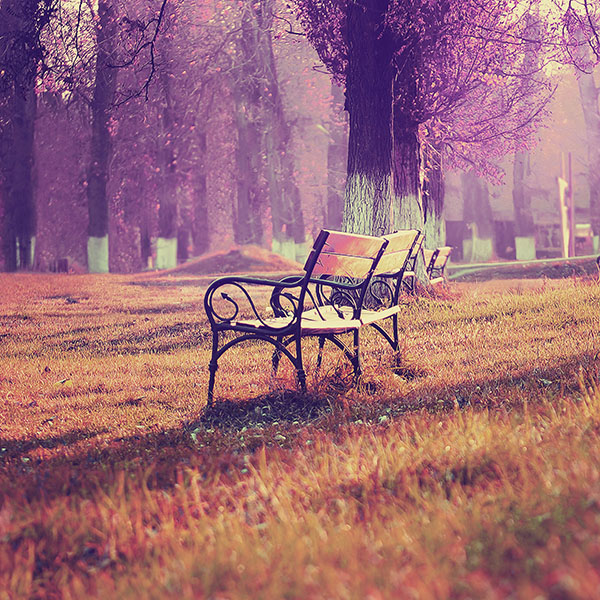 iPapers.co-Apple-iPhone-iPad-Macbook-iMac-wallpaper-md16-wallpaper-fall-blue-park-chair-lonely-nature