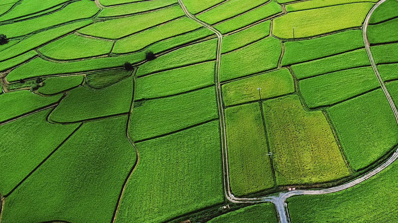 iPapers.co-Apple-iPhone-iPad-Macbook-iMac-wallpaper-md26-wallpaper-green-from-sky-aerial