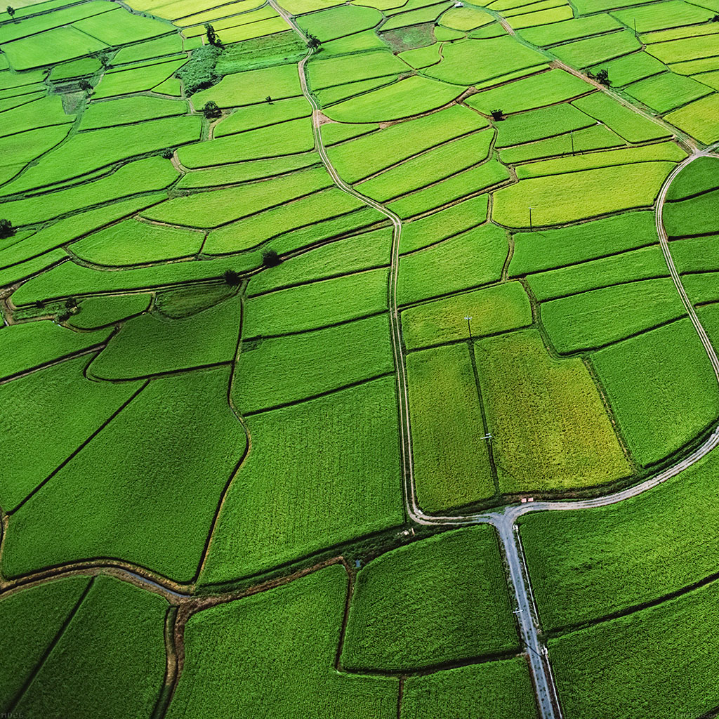 android-wallpaper-md26-wallpaper-green-from-sky-aerial-wallpaper