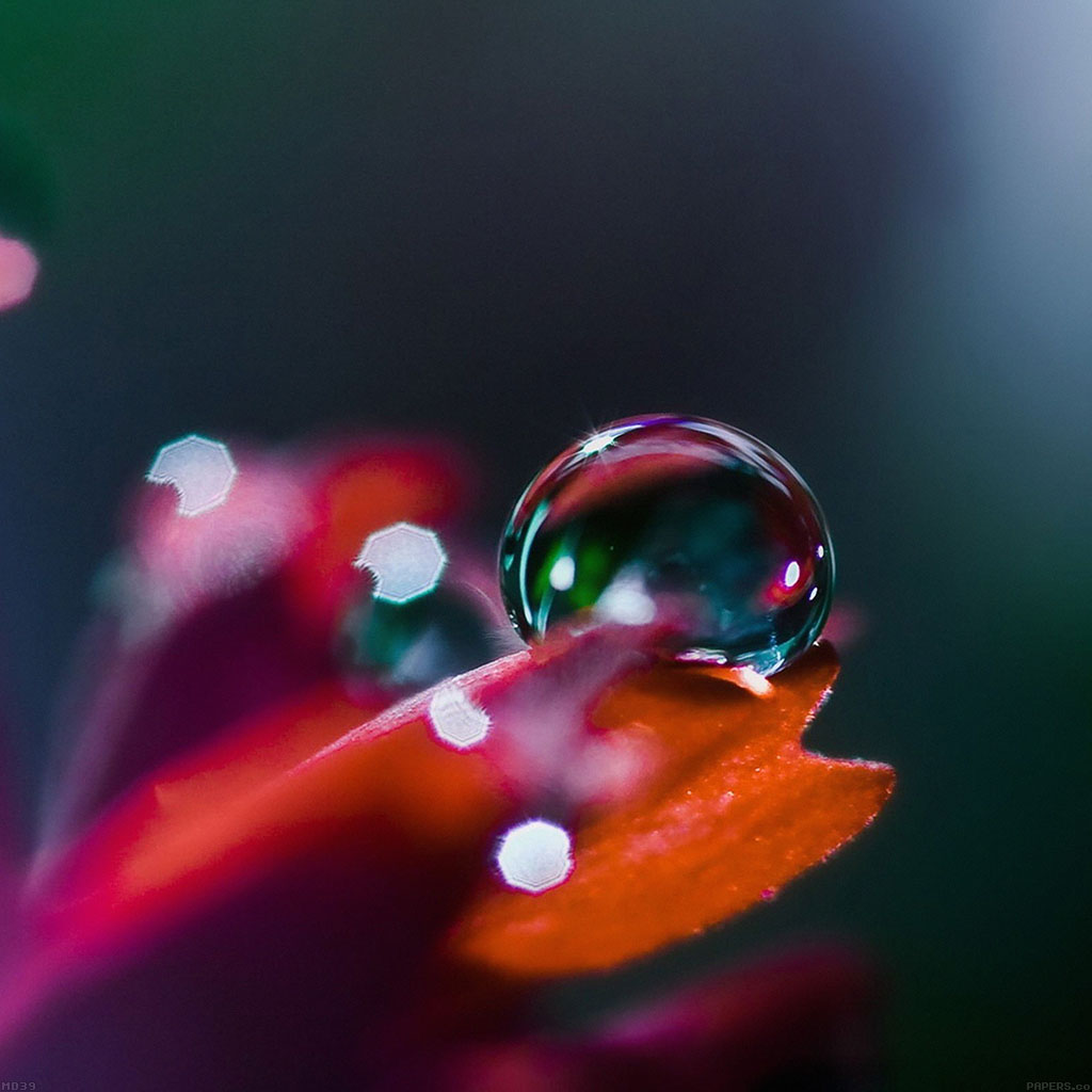 android-wallpaper-md39-wallpaper-raindrops-nature-bokeh-wallpaper