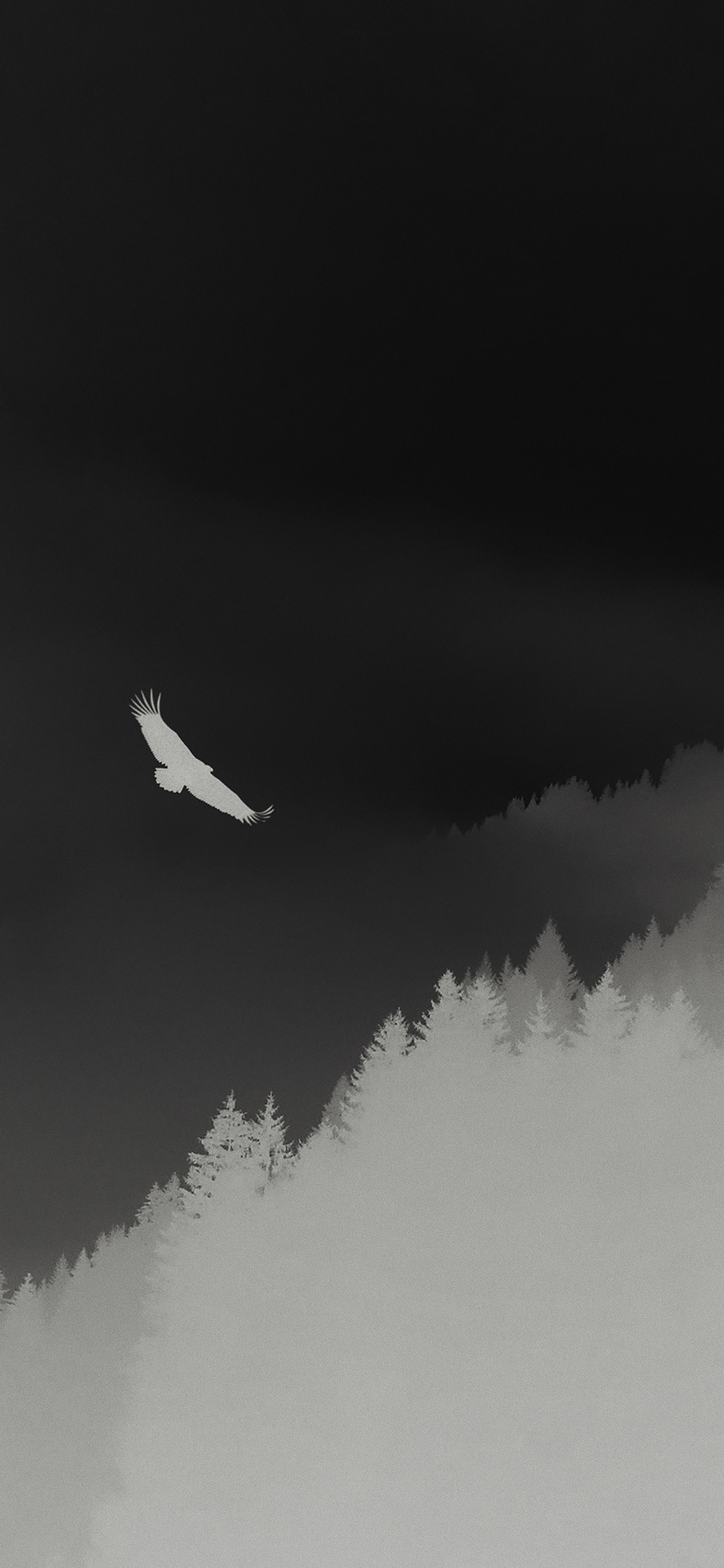 iPhoneXpapers.com-Apple-iPhone-wallpaper-md68-eagle-mountain-dark-fly-animal