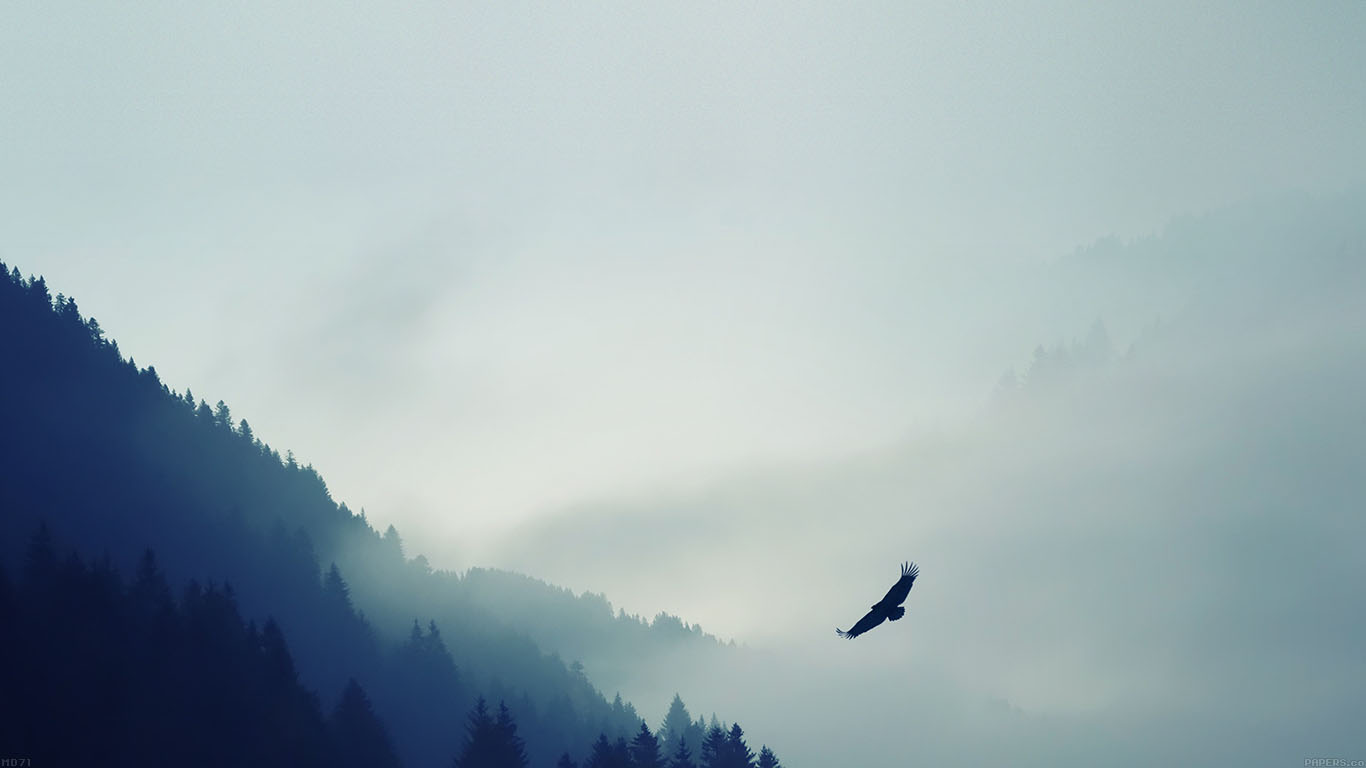 iPapers.co-Apple-iPhone-iPad-Macbook-iMac-wallpaper-md71-eagle-mountain-blue-sky