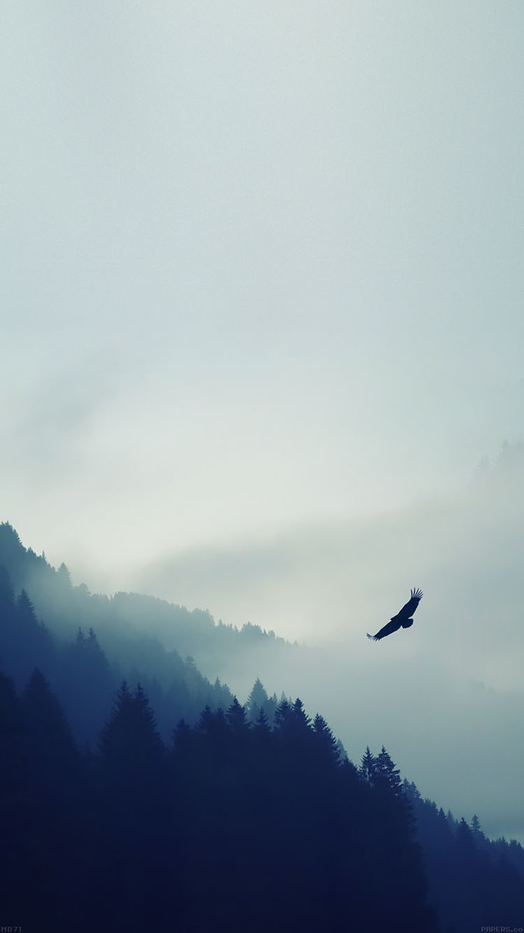 iPhonepapers.com-Apple-iPhone8-wallpaper-md71-eagle-mountain-blue-sky