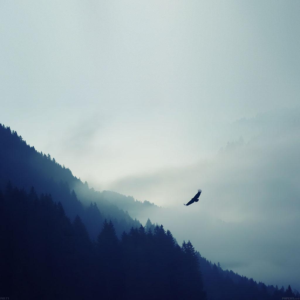 daily-best minimal mountain sky