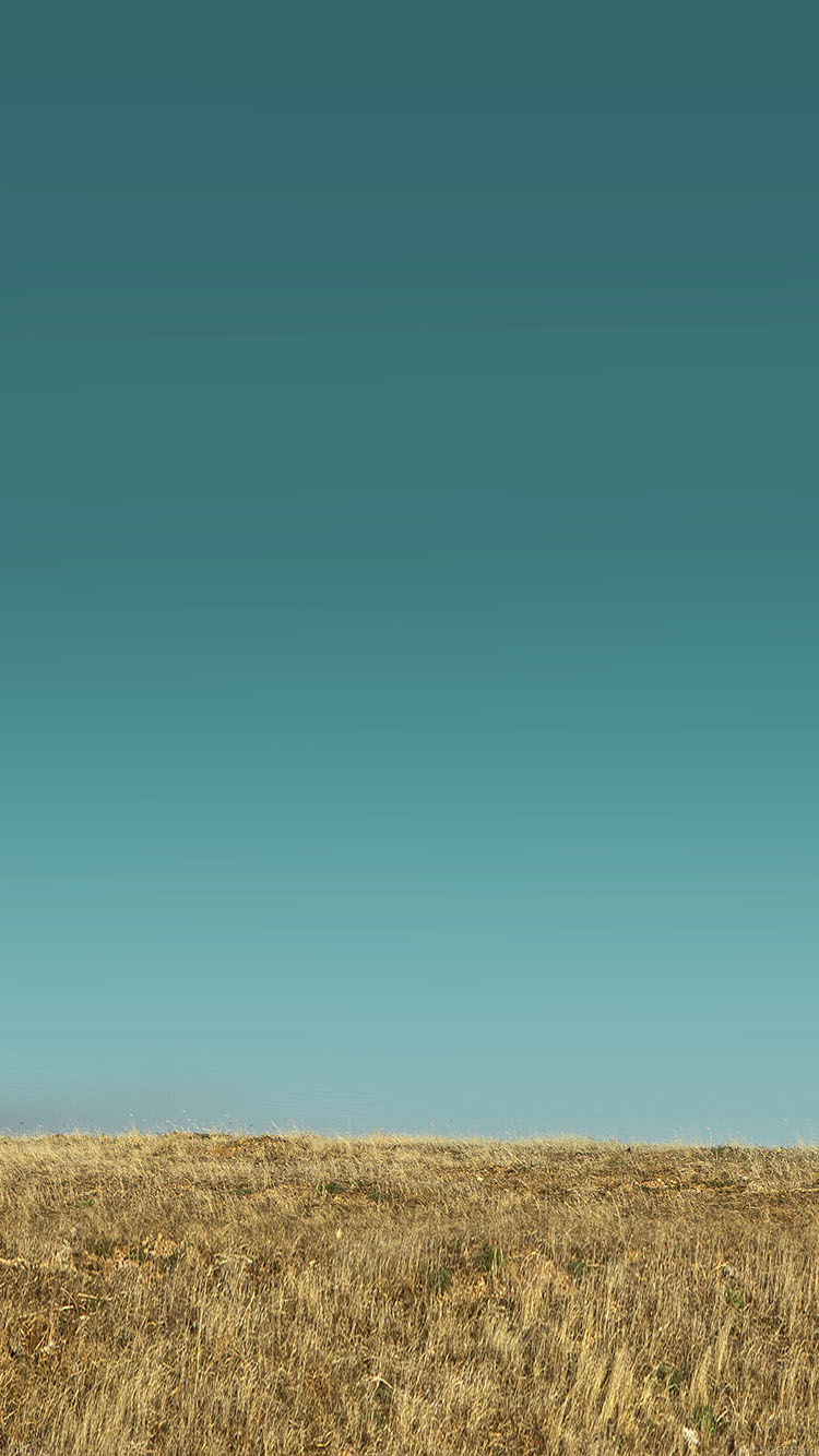 Papers.co-iPhone5-iphone6-plus-wallpaper-md86-nature-field-green-sky
