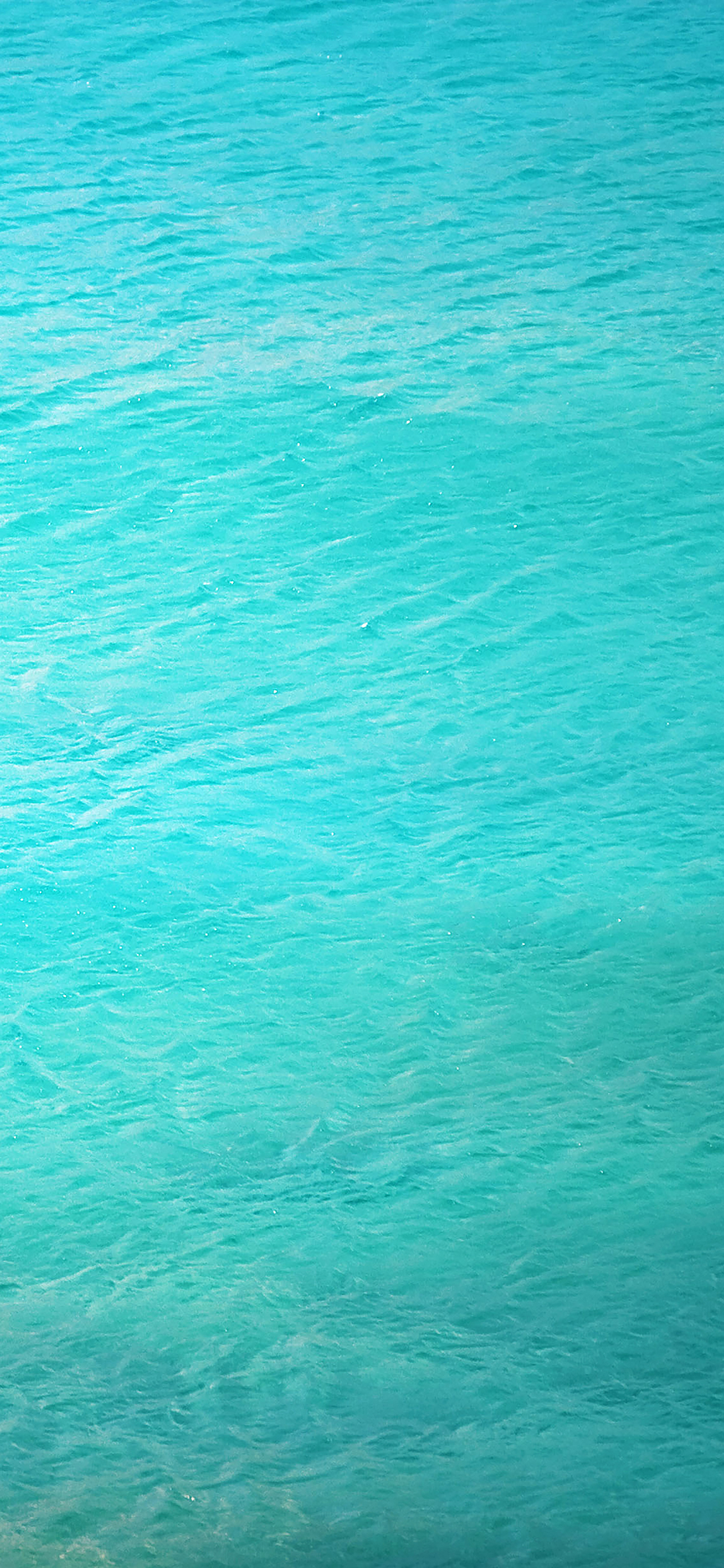 iPhoneXpapers.com-Apple-iPhone-wallpaper-me38-clear-sea-ocean-life