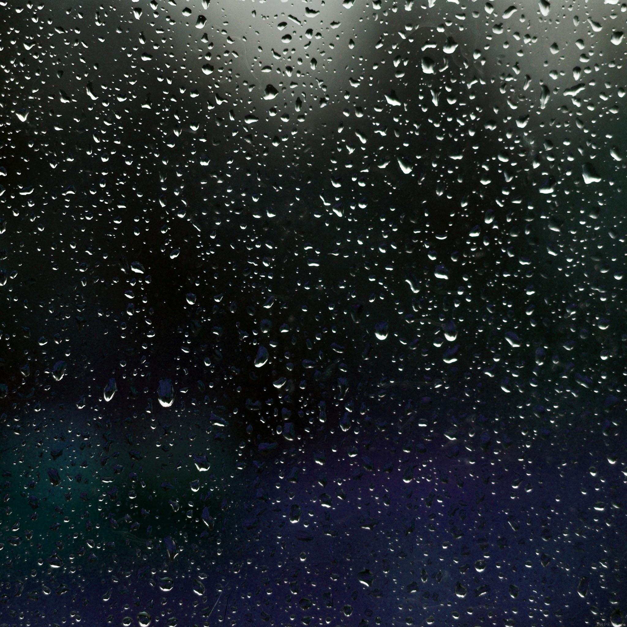 Wallpapers - Rainy nature hd wallpaper ...