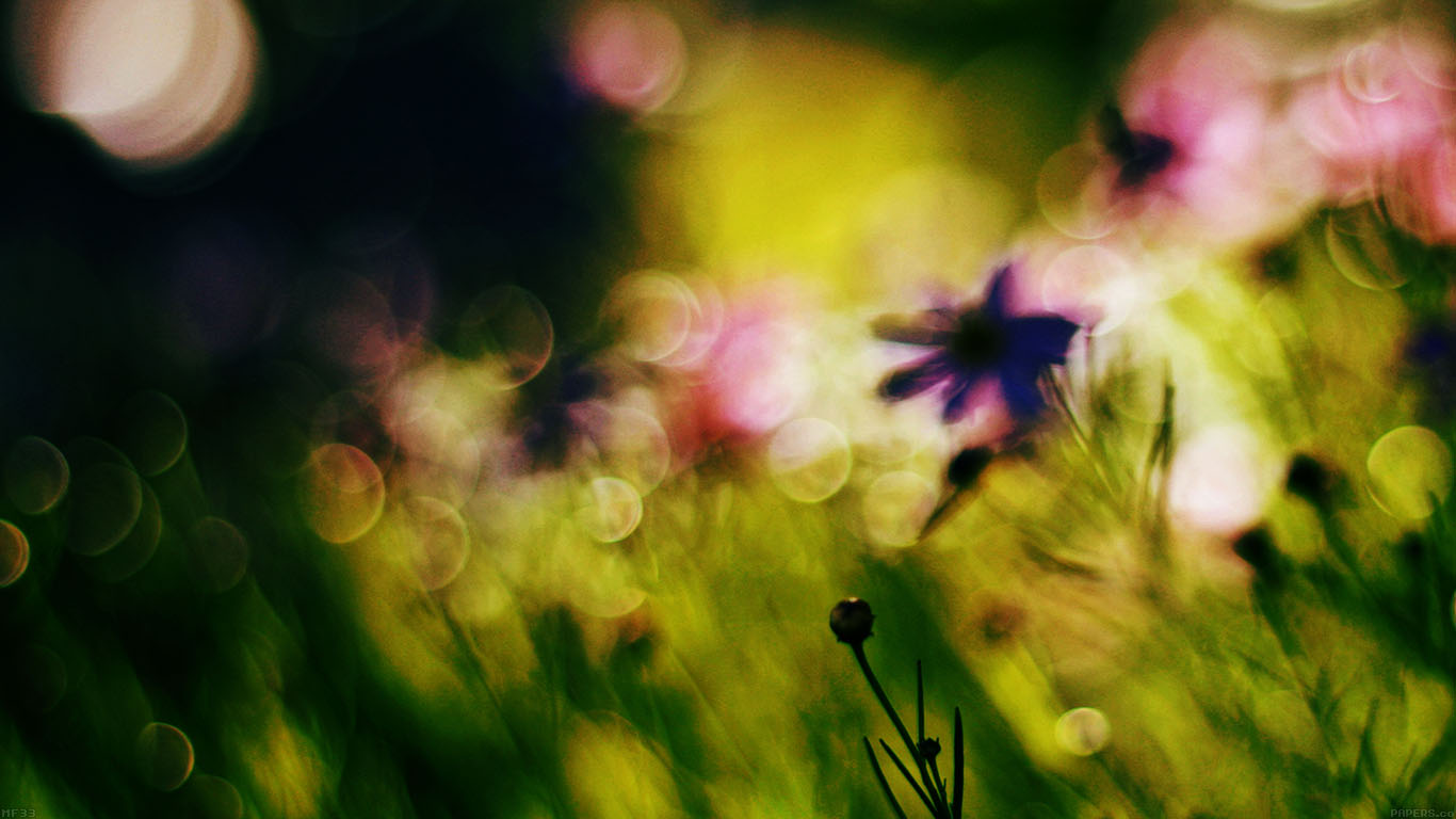 desktop-wallpaper-laptop-mac-macbook-airmf33-flower-bokeh-spring-days-dark-wallpaper