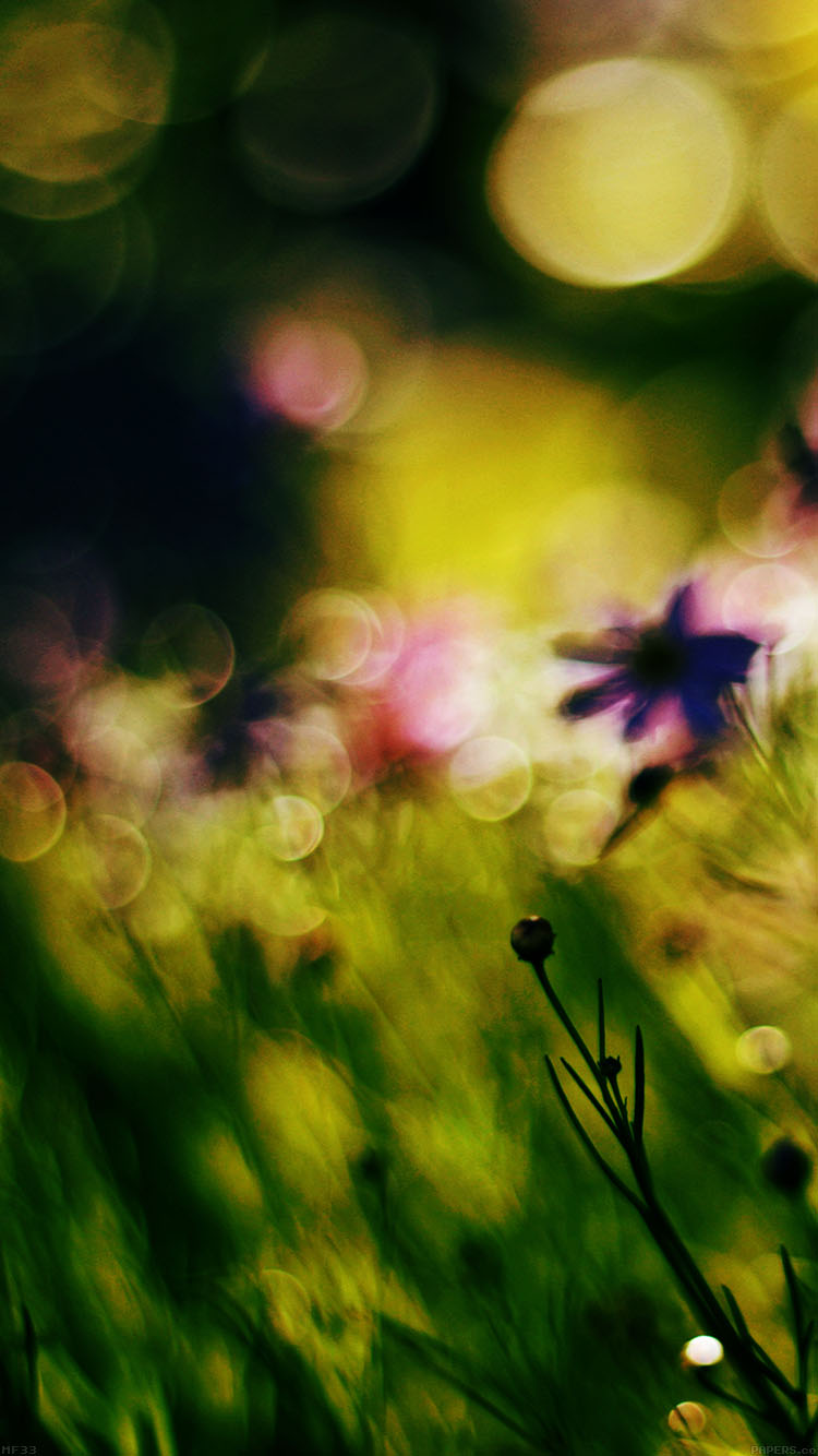Papers.co-iPhone5-iphone6-plus-wallpaper-mf33-flower-bokeh-spring-days-dark