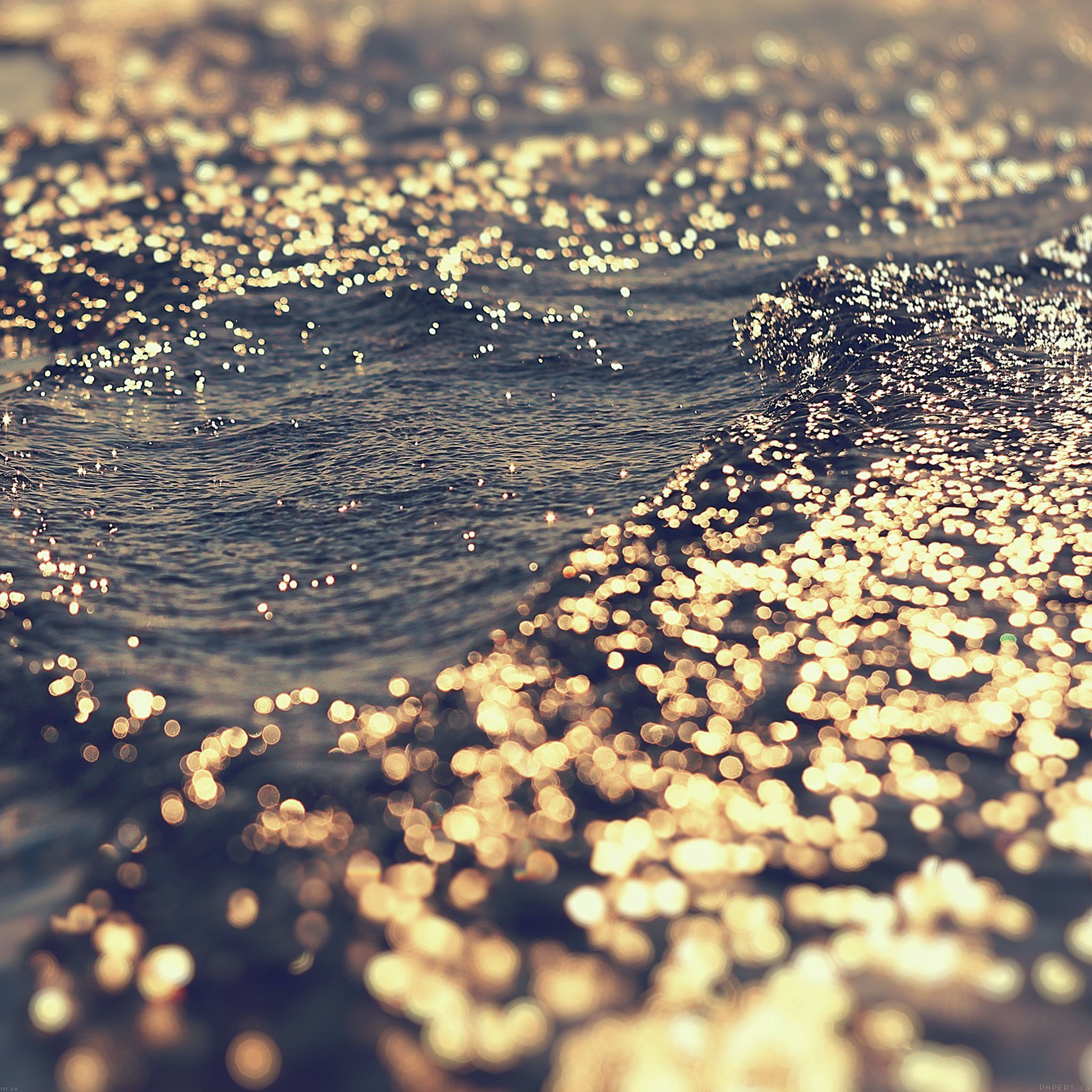 Mf40 gold sea water sunset ocean - Aquatic wallpaper ...
