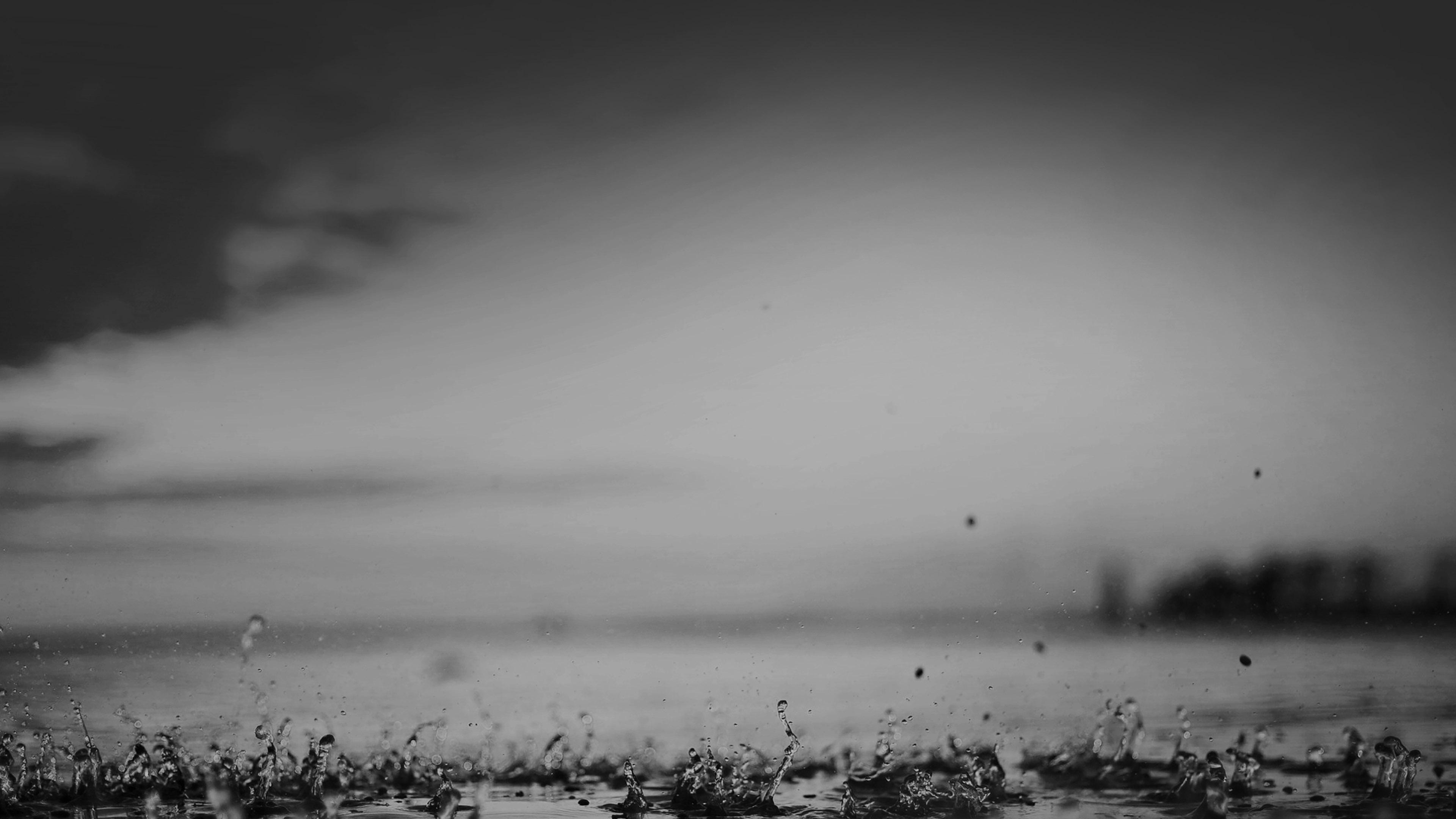 black rain essays Essays and criticism on arna bontemps' black thunder - critical essays.