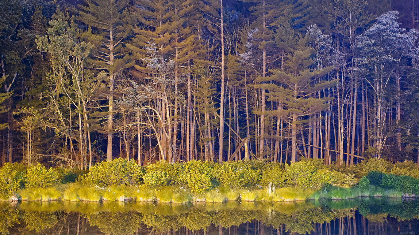 iPapers.co-Apple-iPhone-iPad-Macbook-iMac-wallpaper-mg67-night-wood-with-lake-nature-wallpaper