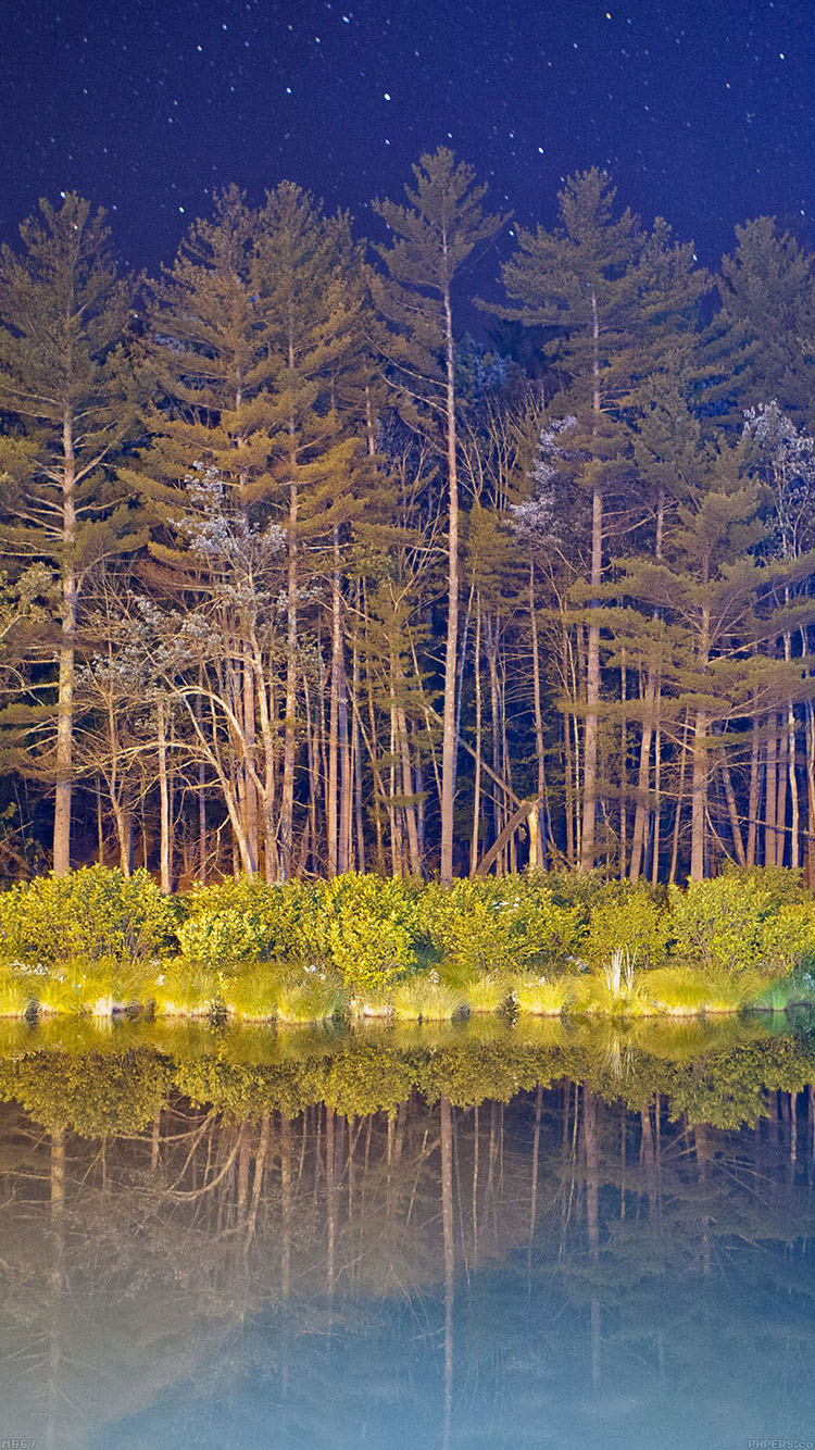 iPhone6papers.co-Apple-iPhone-6-iphone6-plus-wallpaper-mg67-night-wood-with-lake-nature