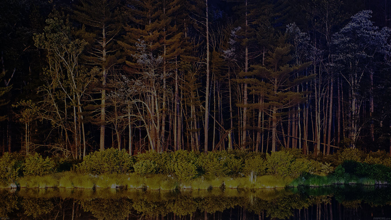 desktop-wallpaper-laptop-mac-macbook-airmg68-night-dark-wood-with-lake-nature-wallpaper