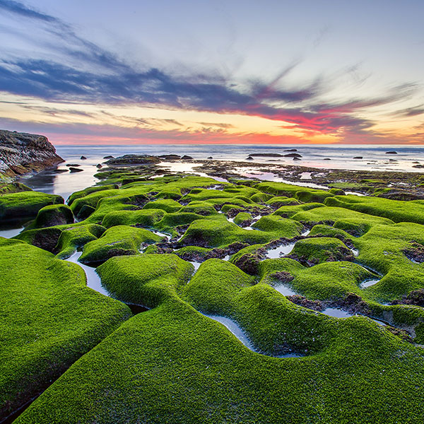 iPapers.co-Apple-iPhone-iPad-Macbook-iMac-wallpaper-mg77-la-jolla-green-shore-wallpaper-sea