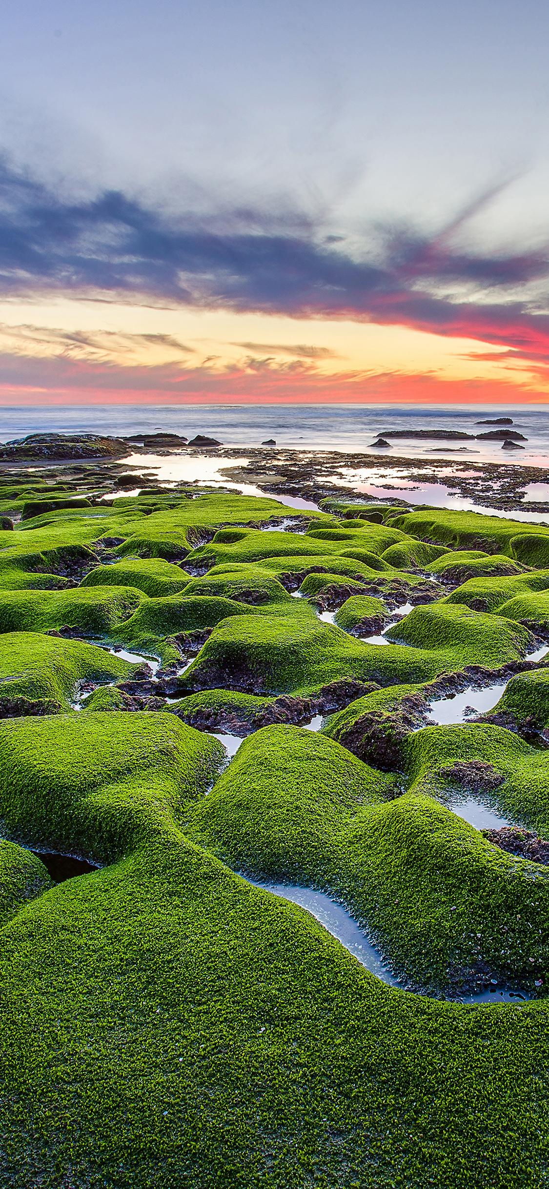 iPhoneXpapers.com-Apple-iPhone-wallpaper-mg77-la-jolla-green-shore-wallpaper-sea