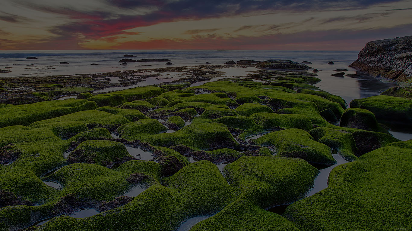 iPapers.co-Apple-iPhone-iPad-Macbook-iMac-wallpaper-mg78-la-jolla-green-dark-shore-wallpaper-sea-wallpaper