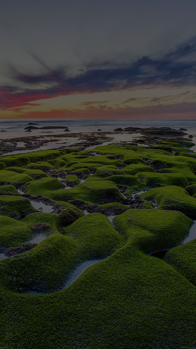 iPhone6papers.co-Apple-iPhone-6-iphone6-plus-wallpaper-mg78-la-jolla-green-dark-shore-wallpaper-sea