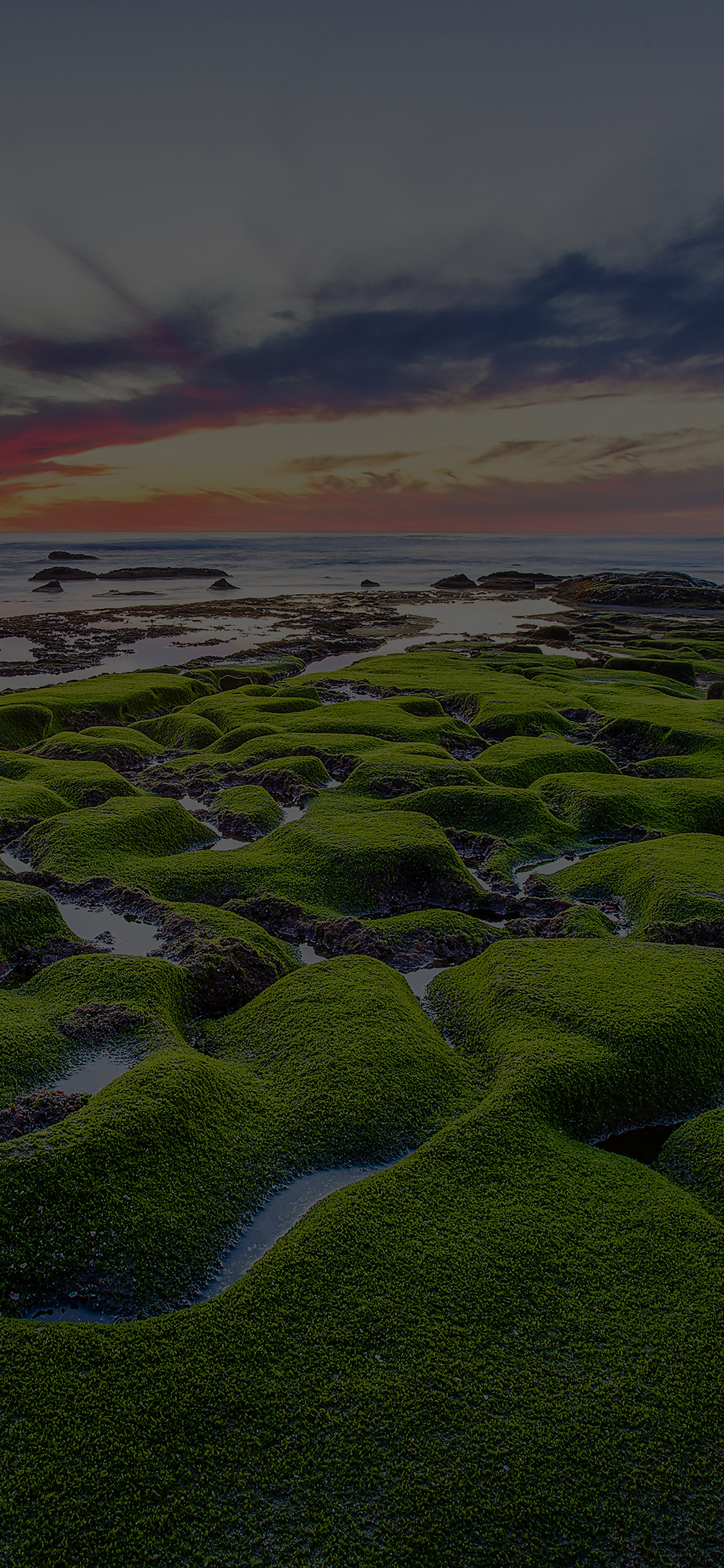 iPhoneXpapers.com-Apple-iPhone-wallpaper-mg78-la-jolla-green-dark-shore-wallpaper-sea