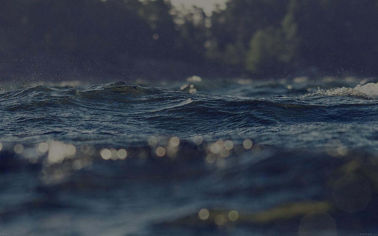 mh42-water-drowning-lake-green-nature-wallpaper