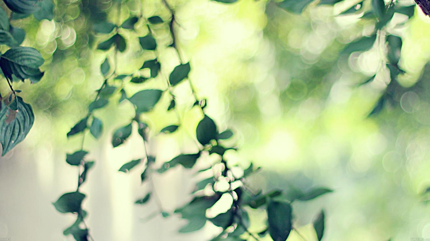 iPapers.co-Apple-iPhone-iPad-Macbook-iMac-wallpaper-mh43-tree-bokeh-calm-morning-nature-park-wallpaper