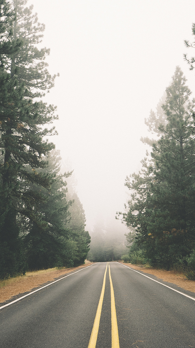 iPhone6papers.co-Apple-iPhone-6-iphone6-plus-wallpaper-mi44-road-mountain-jay-mantri-nature