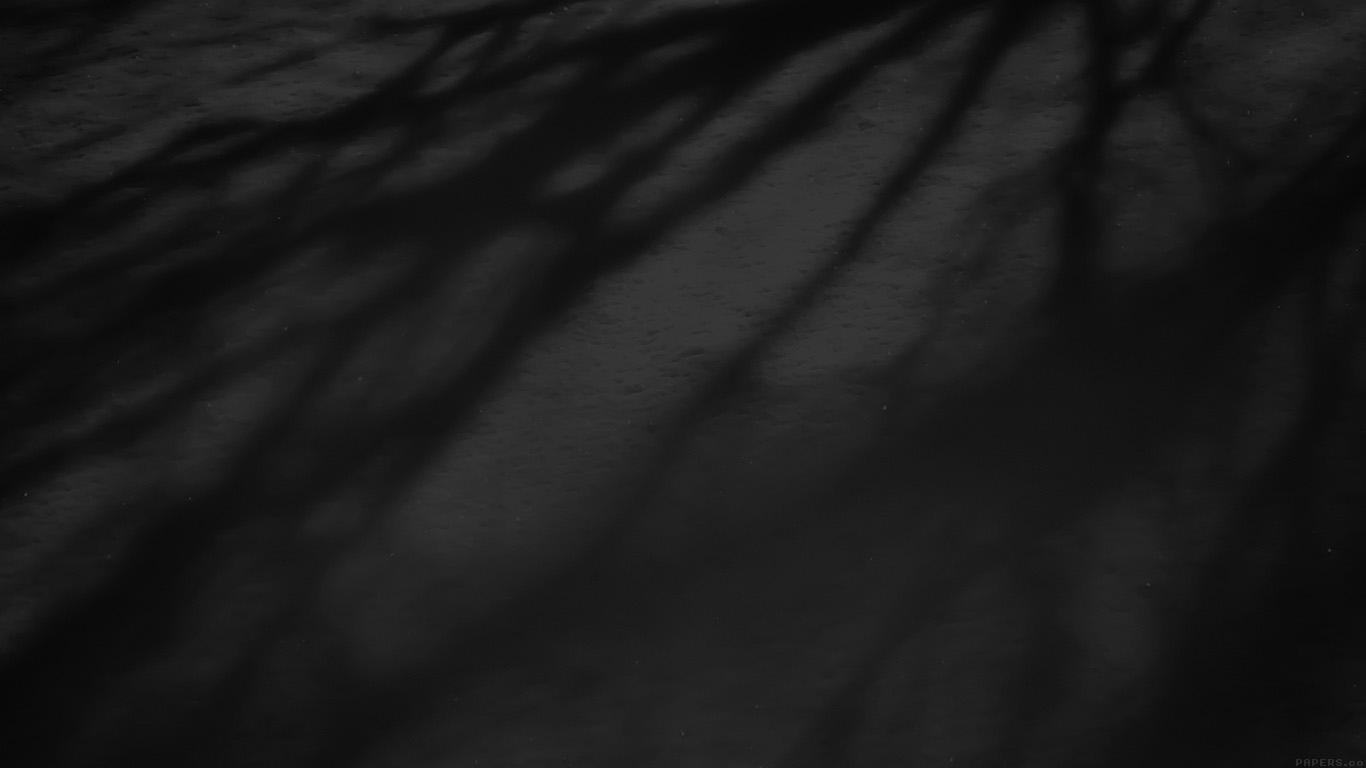 desktop-wallpaper-laptop-mac-macbook-airmi67-snow-shadow-black-tree-nature-wallpaper