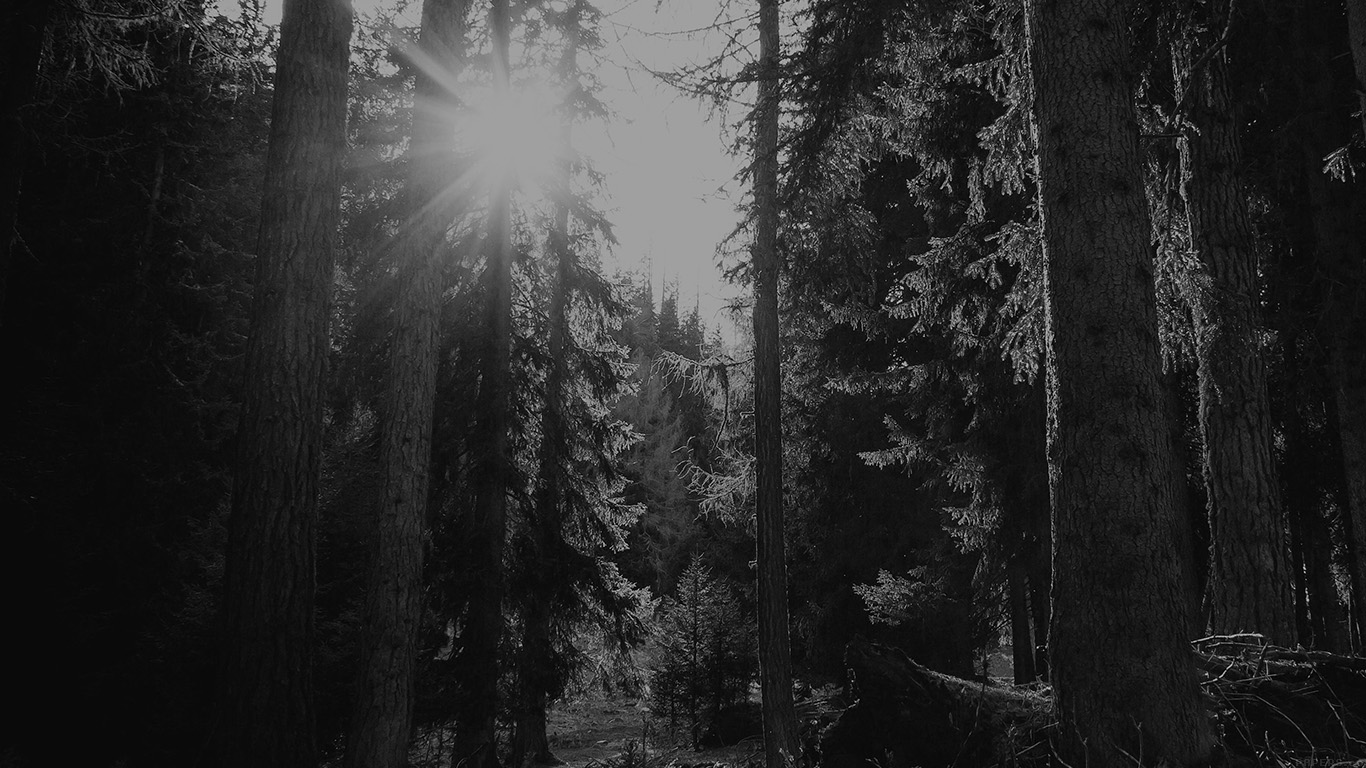 iPapers.co-Apple-iPhone-iPad-Macbook-iMac-wallpaper-mi95-mountain-sunlight-bw-marco-jorger-nature-wallpaper