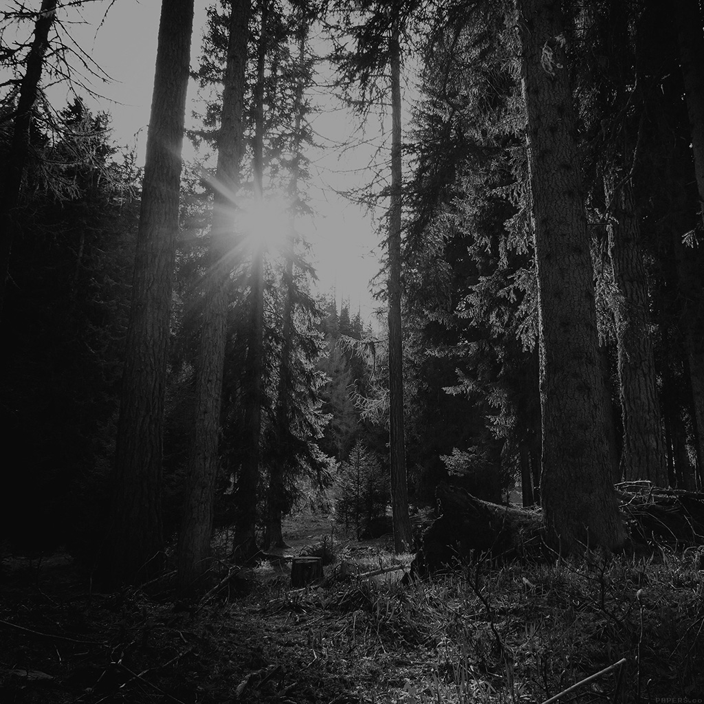 android-wallpaper-mi95-mountain-sunlight-bw-marco-jorger-nature-wallpaper