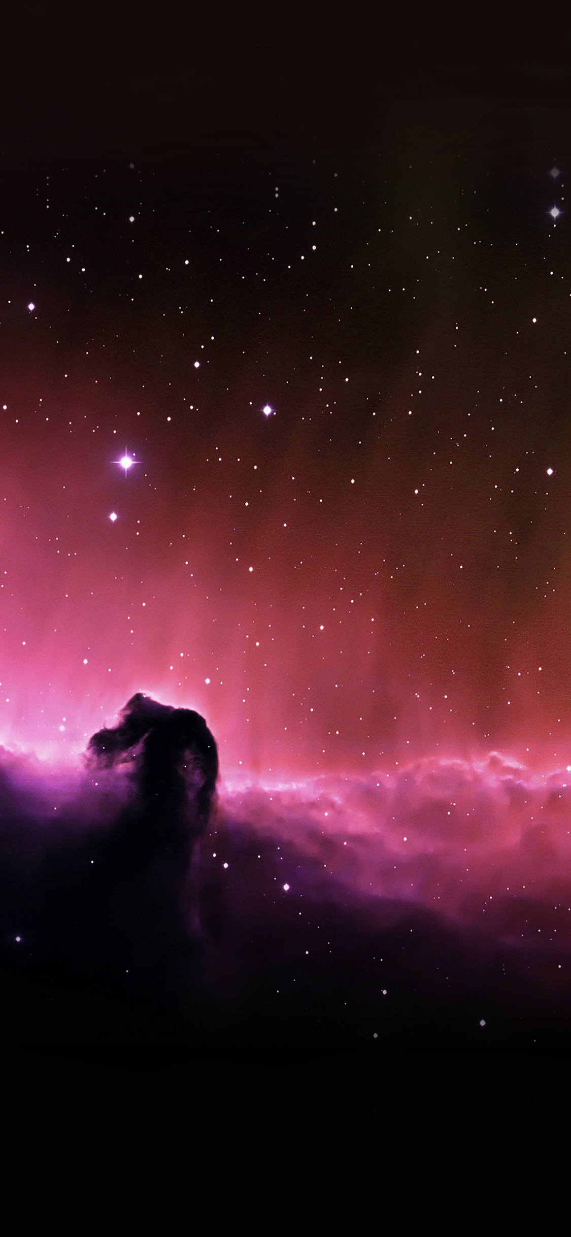 iPhoneXpapers.com-Apple-iPhone-wallpaper-mj10-horse-head-nebula-sky-space-stars