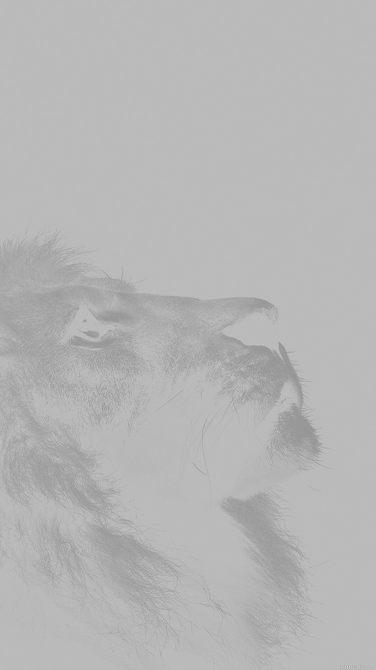 iPhone7papers.com-Apple-iPhone7-iphone7plus-wallpaper-mj51-lion-looking-sky-animal-nature-white-photo