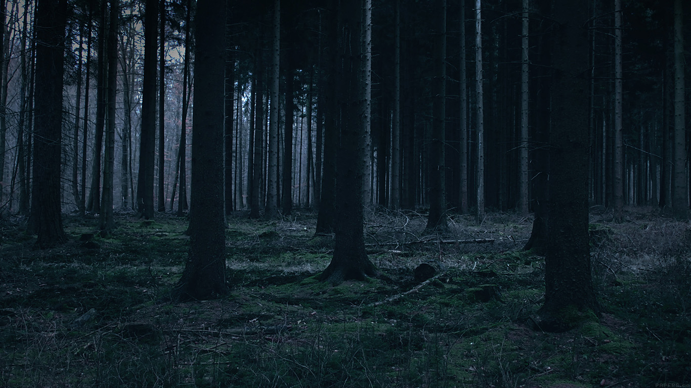 iPapers.co-Apple-iPhone-iPad-Macbook-iMac-wallpaper-mj52-forest-dark-night-trees-nature-wallpaper