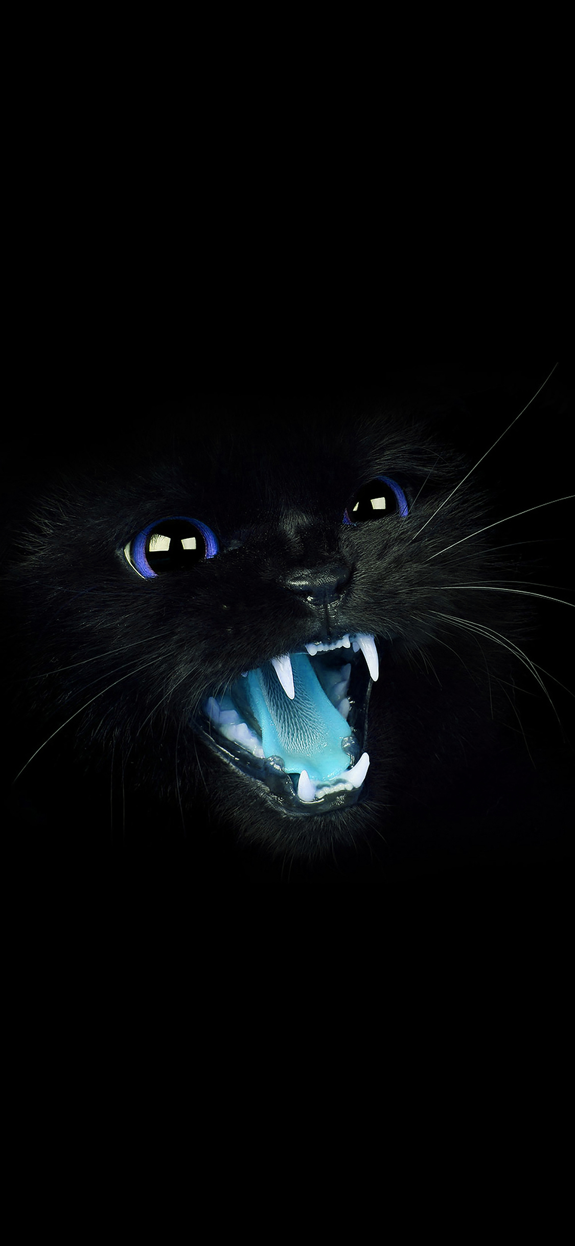 Iphonexpapers Mj55 Black Cat Blue Eye Roar Animal Cute
