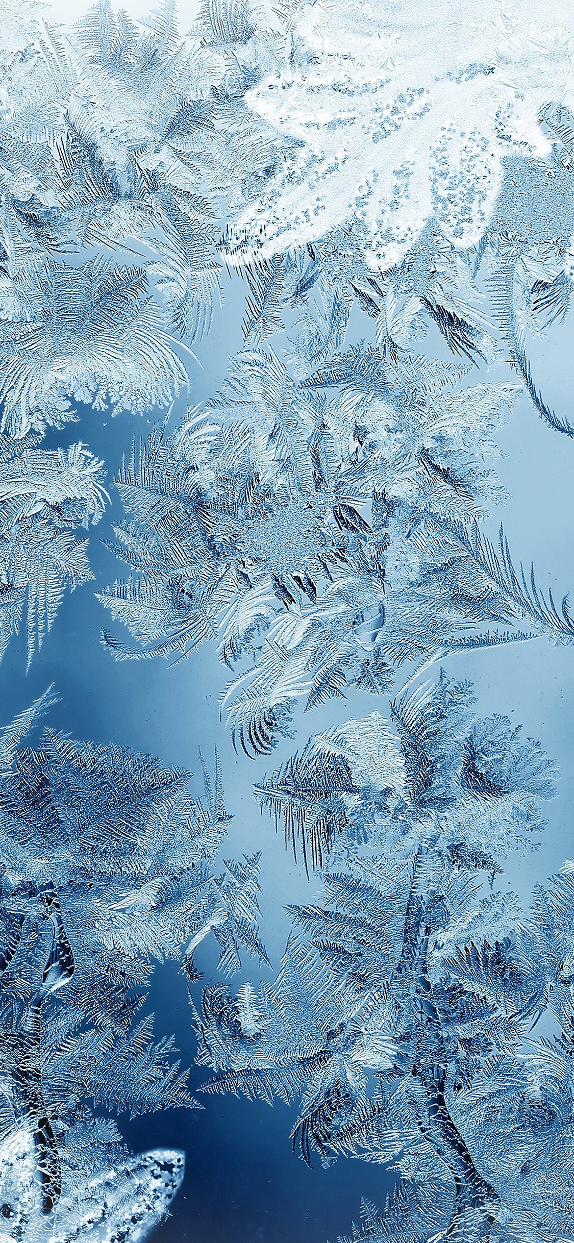 iPhoneXpapers.com-Apple-iPhone-wallpaper-mj59-ice-pattern-blue-snow-nauture-christmas