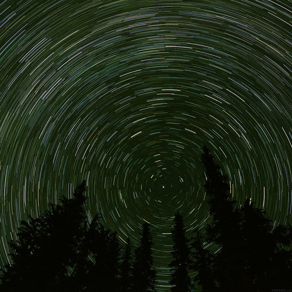 android-wallpaper-mj73-star-trail-green-tree-space-night-nature-wallpaper