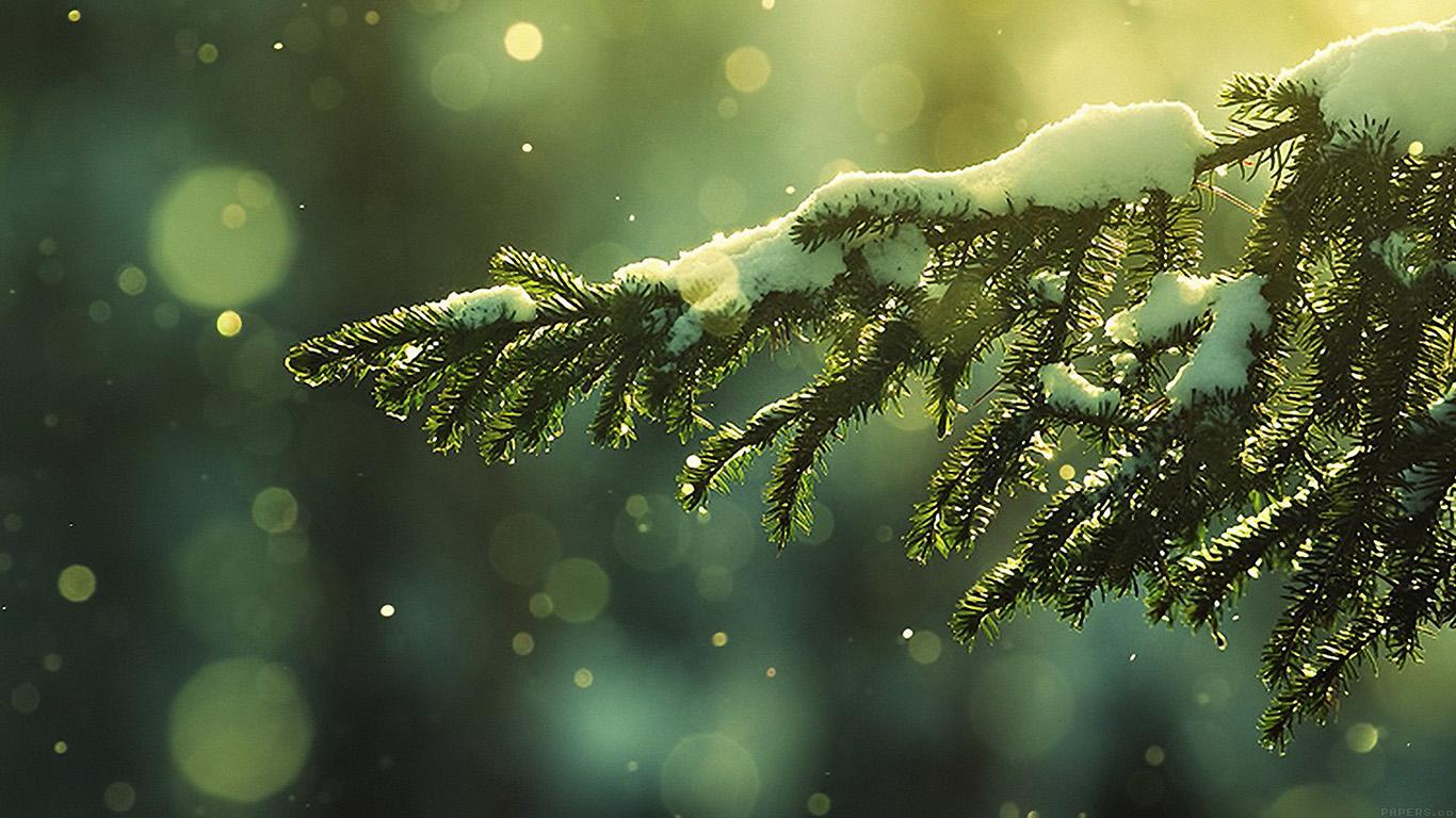 iPapers.co-Apple-iPhone-iPad-Macbook-iMac-wallpaper-mk27-snowing-tree-winter-nature-mountain-wallpaper