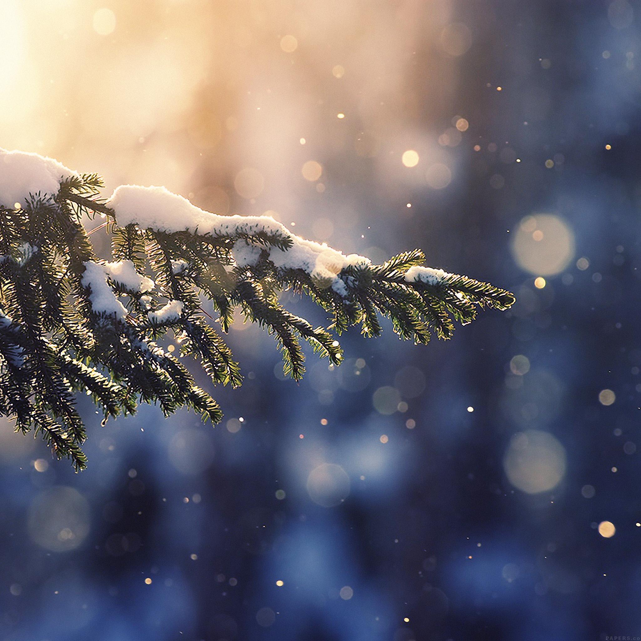 freeios8 | iphone wallpaper | mk28-snowing-tree-blue-christmas