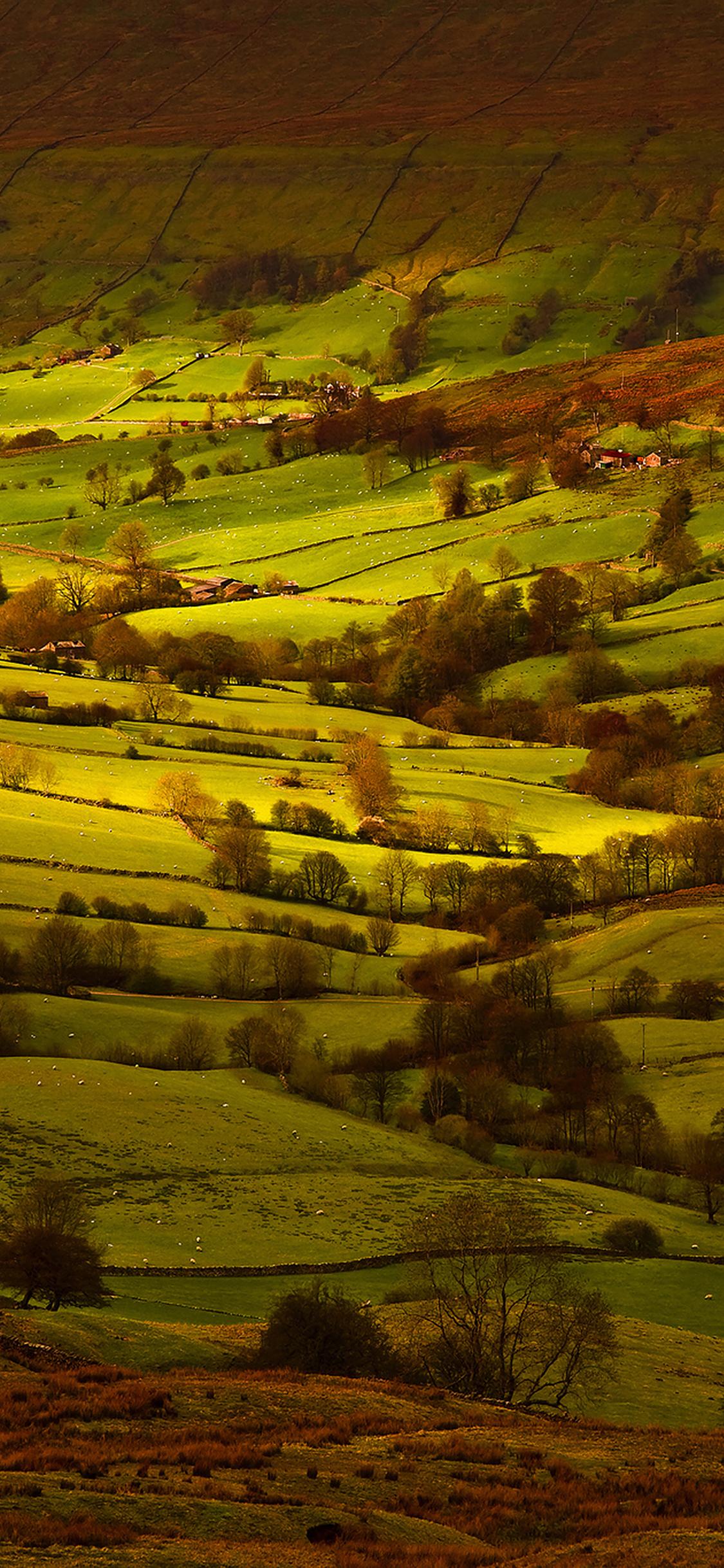 iPhoneXpapers.com-Apple-iPhone-wallpaper-mk81-fall-field-mountain-nature-tree