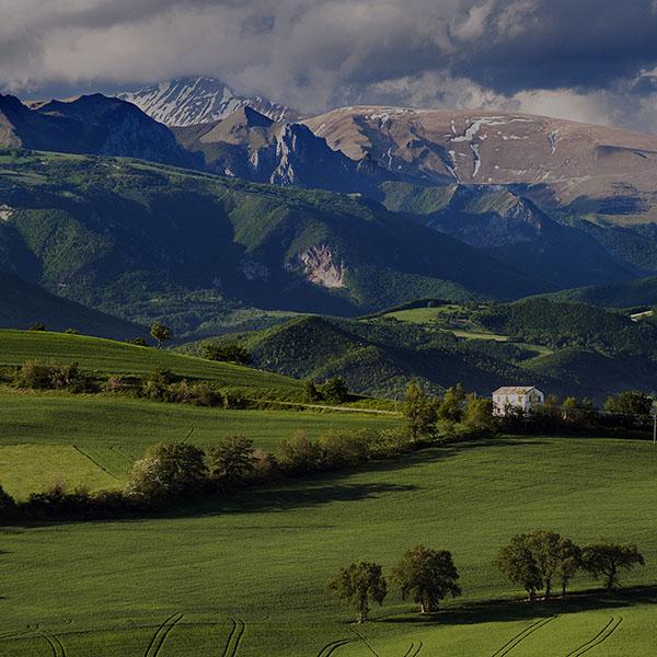 iPapers.co-Apple-iPhone-iPad-Macbook-iMac-wallpaper-mk95-mountain-summer-green-dark-nature-peace-wallpaper