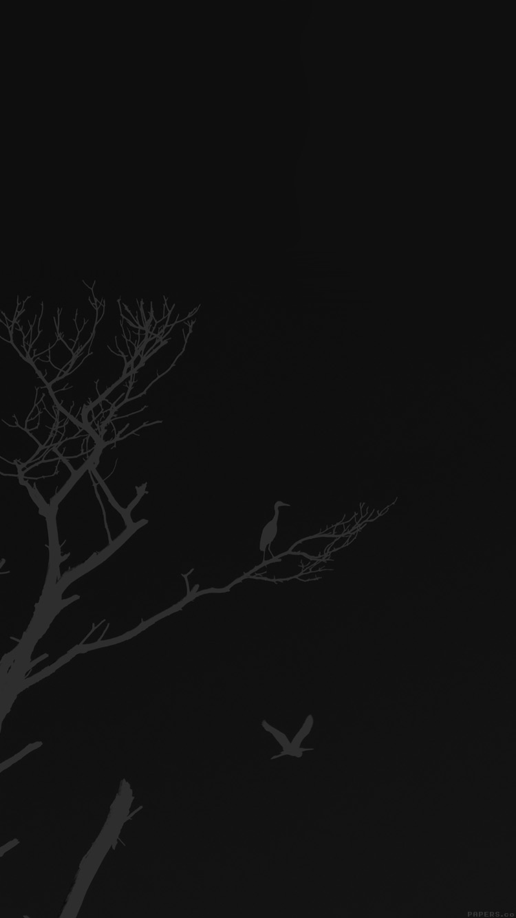 iPhone6papers.co-Apple-iPhone-6-iphone6-plus-wallpaper-mk98-bird-sunset-tree-dark-nature-minimal