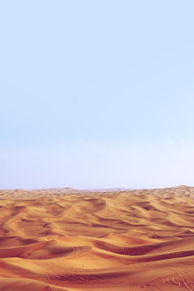 sand dune essay