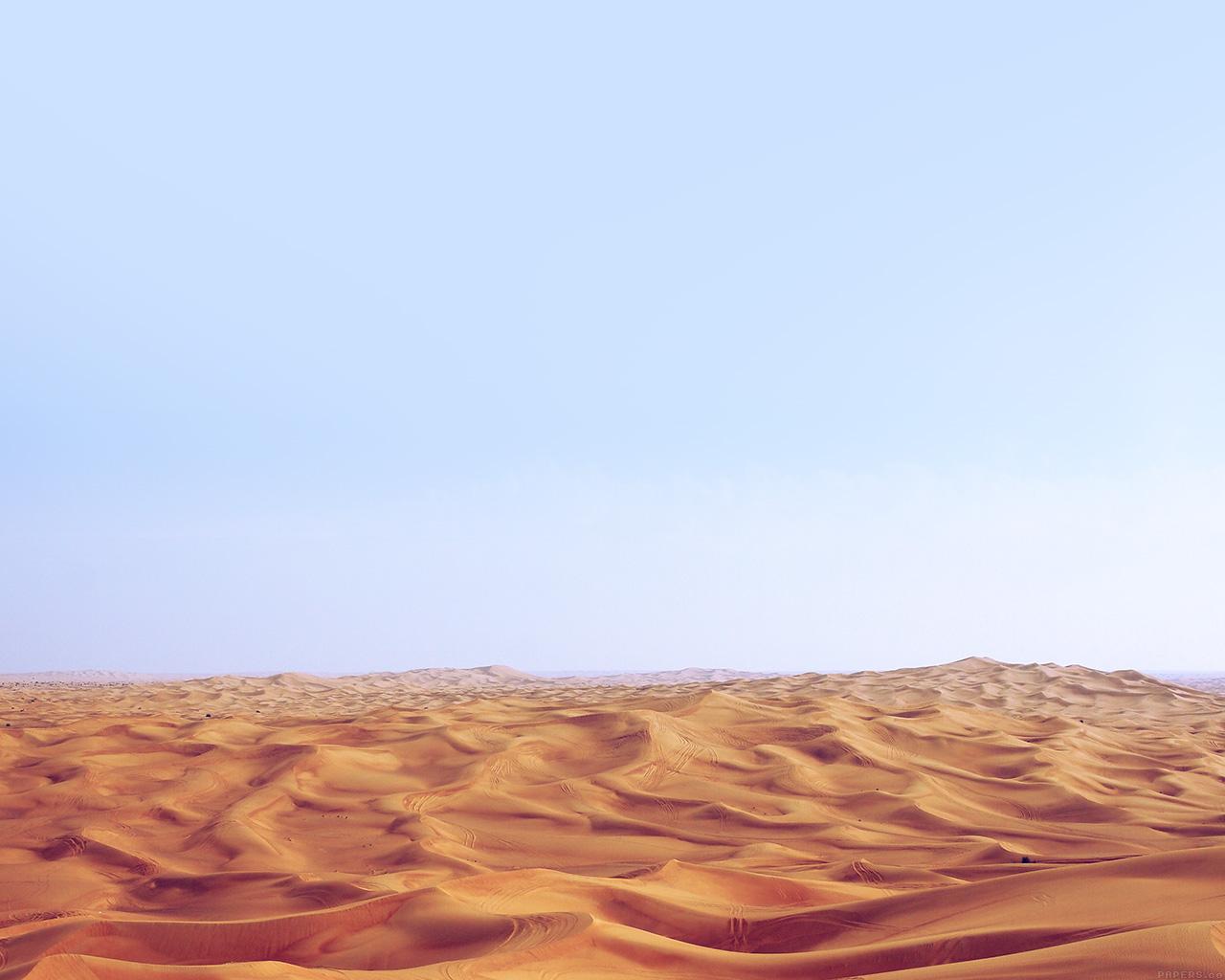 essays on desertification